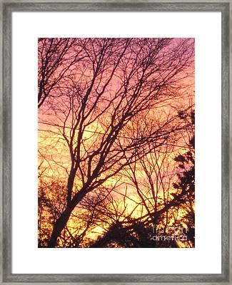 Pink Twilight Framed Print