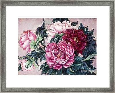 Pink Velvet Framed Print by Irina Effa