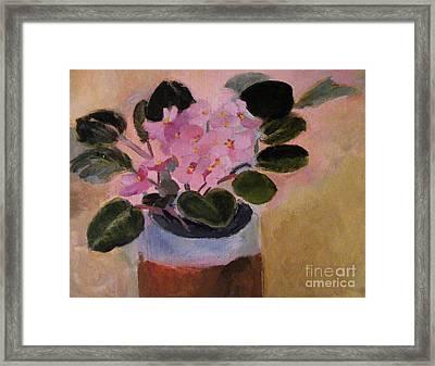 Pink Violets Framed Print