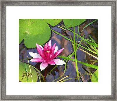 Framed Print featuring the painting Pink Water Lily by Doug Kreuger