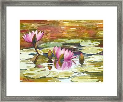 Pink Waterlilies Framed Print