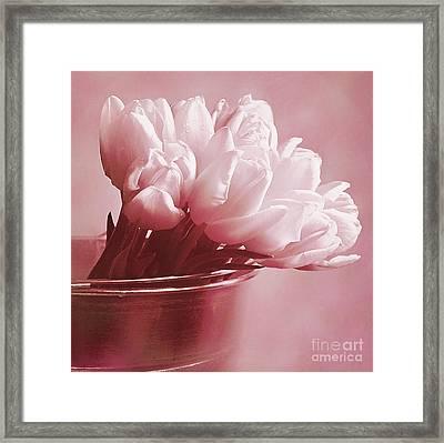Pink Whisper Framed Print