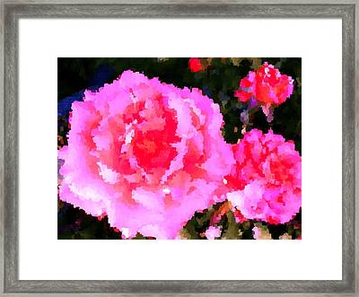 Pink White Roses Framed Print by L Brown