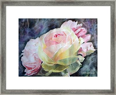 Pink Yellow Rose Angela Framed Print