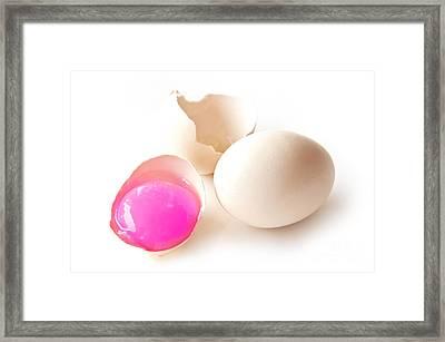 Pink Yolk Egg Framed Print