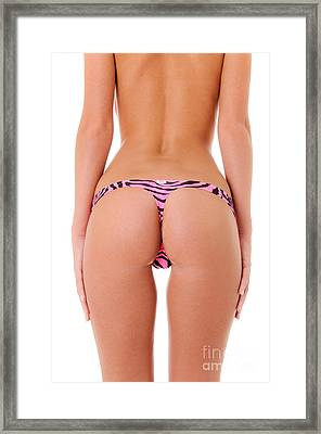 Pink Zebra Thong Framed Print