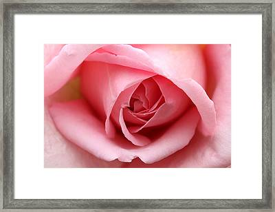 Pinkalicious Framed Print by Connie Handscomb