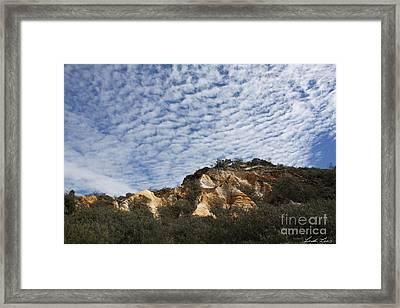 Pinnacles Of Fraser Island Framed Print by Linda Lees