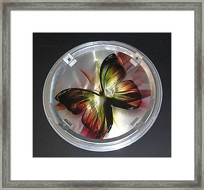 Pinned Framed Print by April Davis