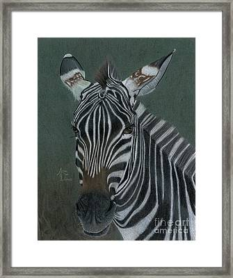 Pinny Framed Print by Angie Deaver