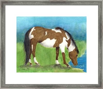 Pinto Mustang Horse Mare Farm Ranch Animal Art Framed Print by Cathy Peek