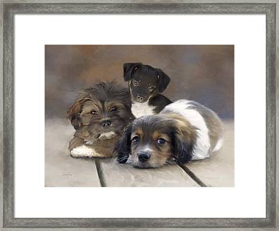 Pinto Pepper And Pickles Framed Print by   DonaRose