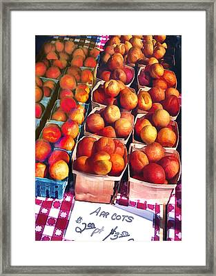 Pints Of Apricots On Checkered Cloth Framed Print