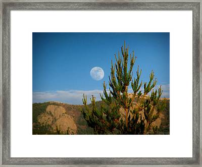 Pinyon Moon Framed Print