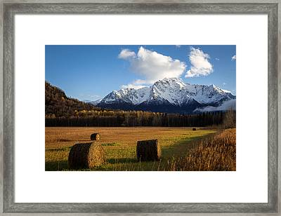 Pioneer Hay Fields Framed Print