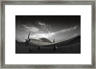 Piper Arrow Framed Print