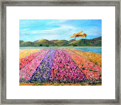 Piper Cub Sunday Framed Print