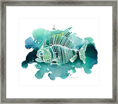 Piranha Framed Print by Mike Lawrence
