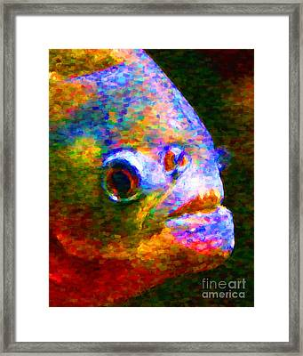 Piranha Framed Print by Wingsdomain Art and Photography