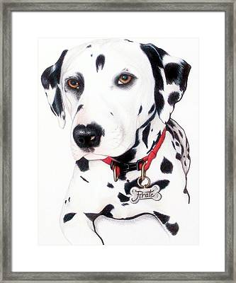Framed Print featuring the drawing Pirate by Danielle R T Haney
