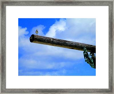 Pirate Ship Framed Print by Randall Weidner