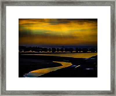 Piscine Framed Print