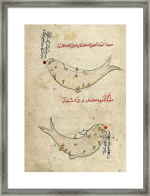 Piscis Austrinus Constellation Framed Print by Library Of Congress