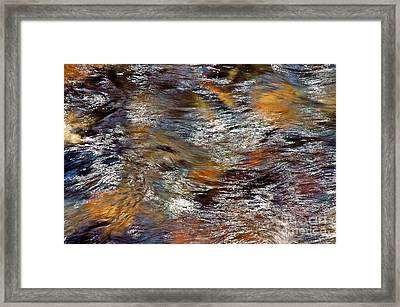 Pisgah Forest - Liquid Color Framed Print by Allen Carroll