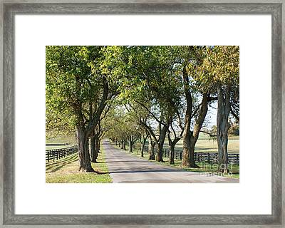Pisgah Pike Framed Print