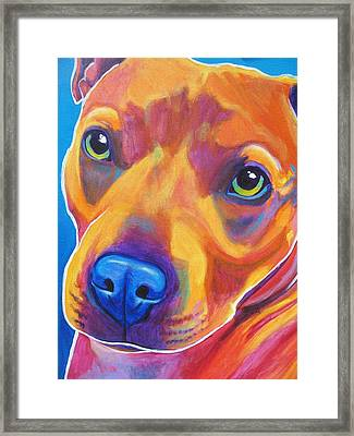 Pit Bull - Boo Framed Print by Alicia VanNoy Call