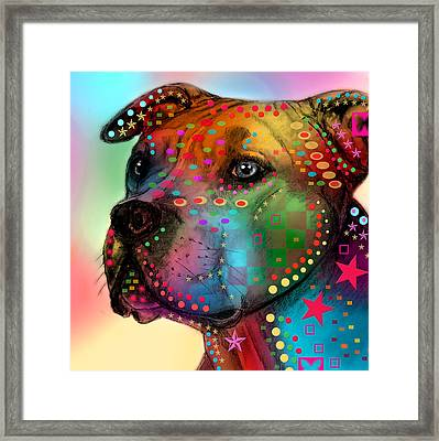 Pit Bull Framed Print by Mark Ashkenazi