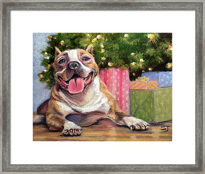 Pitbull Christmas Framed Print by Susan Jenkins