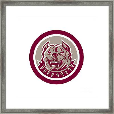 Pitbull Dog Mongrel Head Retro Circle Framed Print by Aloysius Patrimonio