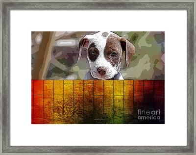 Pitbull Puppy Framed Print