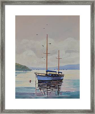 Pittwater Calm Framed Print by Murray McLeod