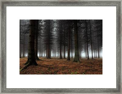 Place Of Silence Framed Print