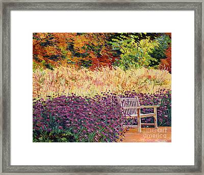 Place Of Solitude Framed Print