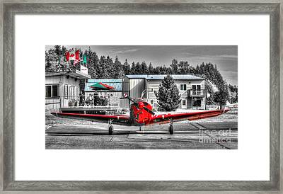 Flying To Lunch In Pacific Northwest Washington  Framed Print by Tap On Photo