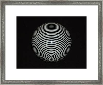 Framed Print featuring the photograph Planet Zebra by Douglas Fromm