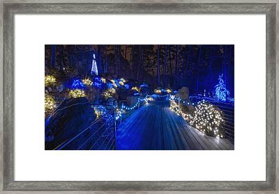 Plank Bridge - Panoramic Framed Print