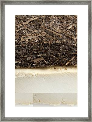 Plant-based Insulating Materials Framed Print