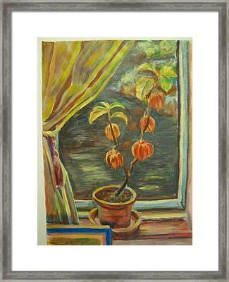 Plant In A Window Framed Print by Ellen Howell