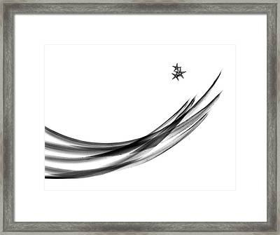 Plant Leaves And Starfish Framed Print by Albert Koetsier X-ray