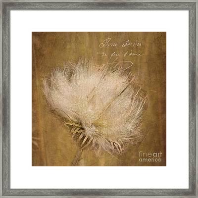 Plant Life Framed Print by Betty LaRue