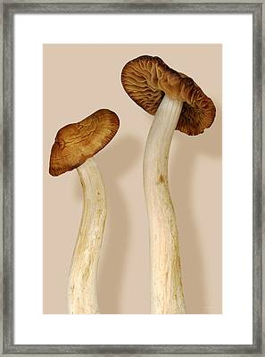 Plant - Mushrooms - I'm So Proud Of My Daughter Framed Print by Mike Savad