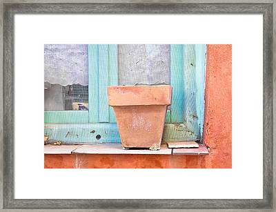 Plant Pot Framed Print by Tom Gowanlock