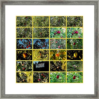 Plantage Framed Print by Klaas Hartz