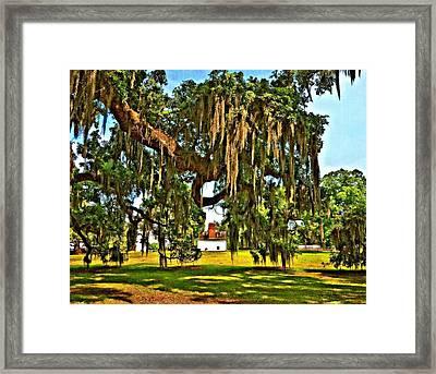 Plantation Oil Framed Print by Steve Harrington