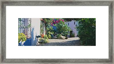 Plants At A House, Marbella, Costa Del Framed Print by Panoramic Images