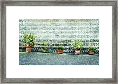 Plants In Pots Framed Print